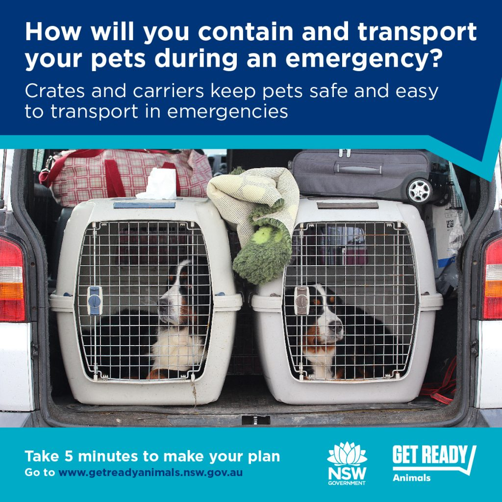 Planning For Your Animals in Emergencies